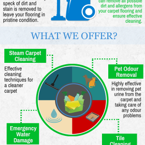 Sydney Steam Cleaning - Professional Carpet Cleaning & More